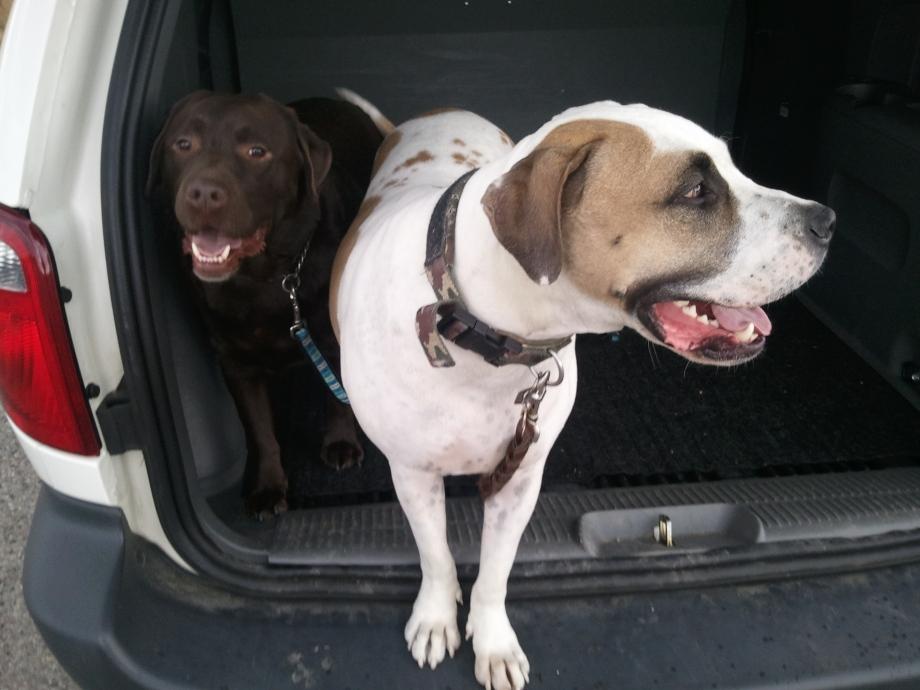 Charlie & Wyatt